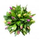 Tulpenboeket gemengd